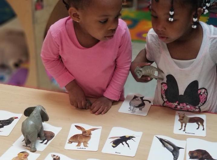 Two african american toddler girls playing around with their toy elephant and sheep while looking at the pictures of different animals t a Preschool & Daycare Serving Hampton Roads, VA